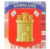 Escudo de soraluze-placencia